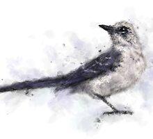 Watercolor Bird by Jamie Stryker