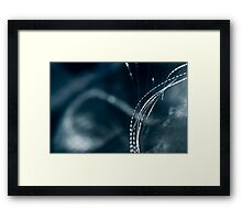 Abstract Macro #142 Framed Print