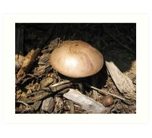 Metalic Mushroom Art Print