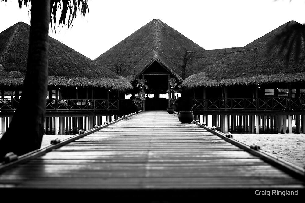 Tropical Island Beach Bar by Craig Ringland