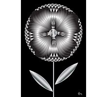 Art Deco Blooming Number 1 Photographic Print