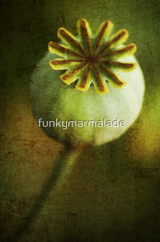 *plump* by funkymarmalade