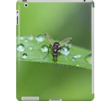 Dew Drops and Fly iPad Case/Skin