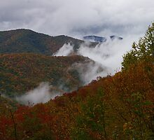 Fall in the Smokies by klziegler