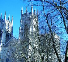 York Minster by artfulvistas
