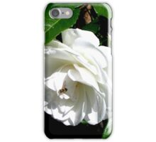 The timeless beauty of a white rose iPhone Case/Skin