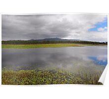 Mareeba Wetlands Poster