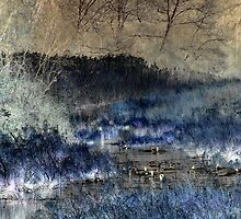 Etched Marshes by kellym