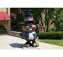 Punxsutawney Phil Photographic Print