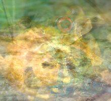 Frog by Solomon1