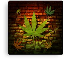 Ganja Leaf Collection Canvas Print