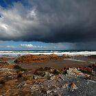 Storm brewing  by Sonya Byrne