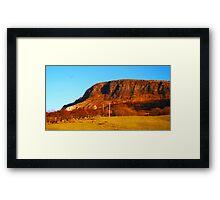 Straidkilly Nature Reserve Framed Print