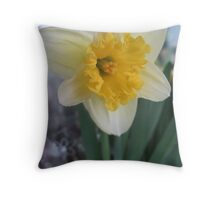 A Yellow Taste of Spring Throw Pillow