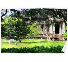 A Worderful Scene - Angkor Wat, Cambodia. Poster