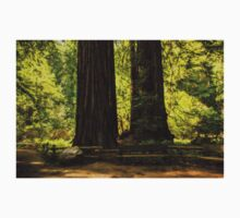 Impressions of Muir Woods, California Kids Clothes