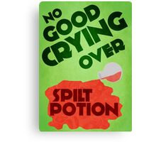 No Good Crying Over Spilt Potion Canvas Print