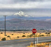 Where the Dalles Mountain Rd meets Hwy 14. by Larry Lingard-Davis