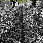 Bicycles by Rob Hawkins