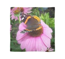 Red Admiral Butterfly on Cone Flowers Scarf