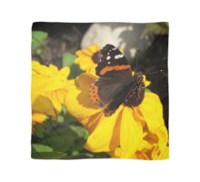 Red Admiral Butterfly on Black Eyed Susan Scarf