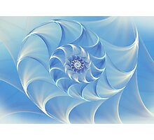 Abstract fractal nautilus background with blue shell Photographic Print