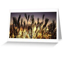 Sunset Boulevard ... Buckinghamshire, UK Greeting Card