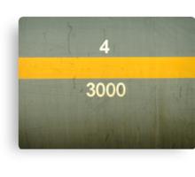 43000 Canvas Print