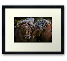 Horse Lords Framed Print