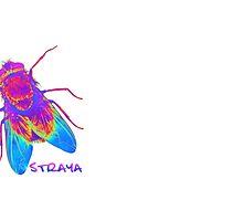 Straya Fly by Enji333
