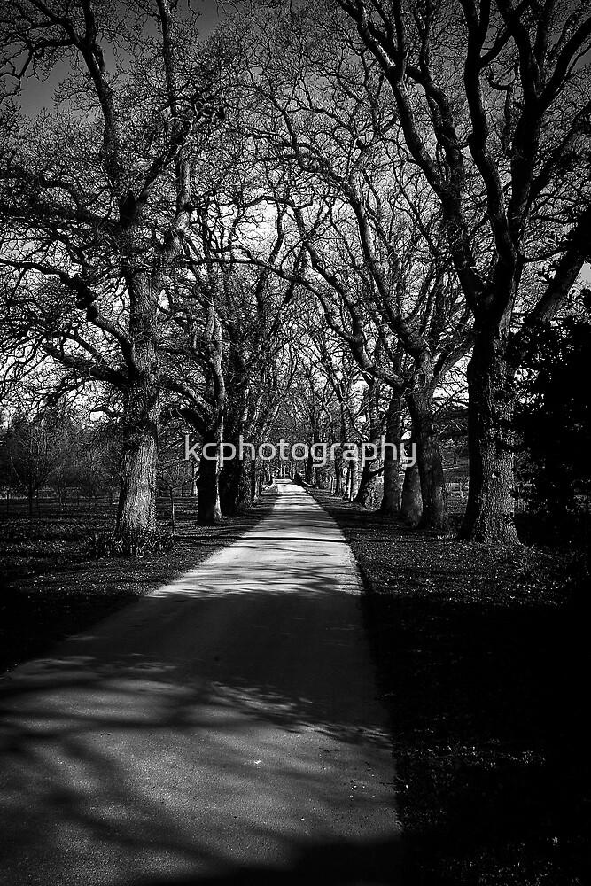 Castle Drive by Richard Hamilton-Veal