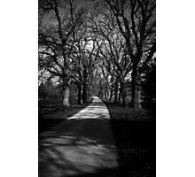 Castle Drive Photographic Print