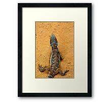 BEARDED DRAGON SCALES Framed Print