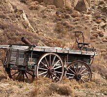 Cart by Werner Padarin