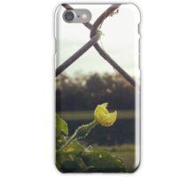 """""""Shine"""" iPhone Case/Skin"""