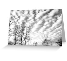 Sky Trails Greeting Card