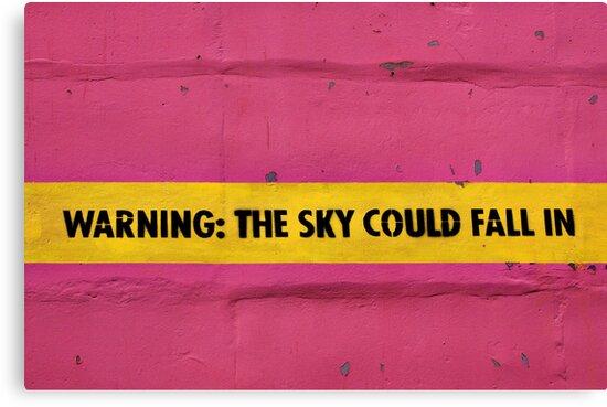 BEWARE!  Falling Sky! by Wendi Donaldson
