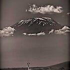Kilimanjaro Giraffe in Sepia - Amboseli National Park by Scott Ward