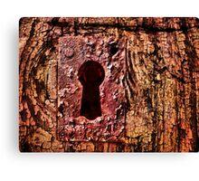 Rustic Lock Canvas Print