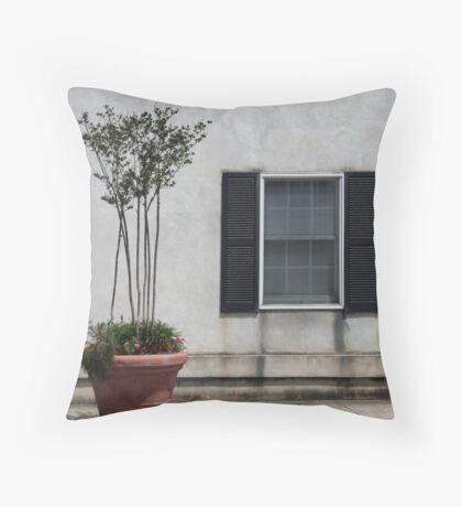 Newberry Window Throw Pillow