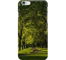 Sunny August Afternoon in the Park iPhone Case/Skin