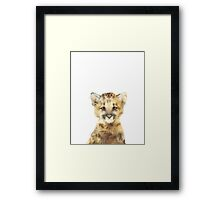 Little Mountain Lion Framed Print