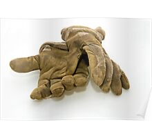 working gloves Poster