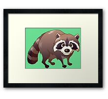 Cute baby raccoon  Framed Print