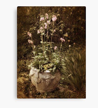 Vintage Planter Canvas Print