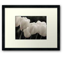 Tulips in B&W Framed Print
