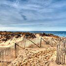 Race Point Beach by Monica M. Scanlan