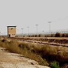Old Guard Towers in Iraq by Charles Buchanan