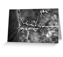 Barbed Greeting Card