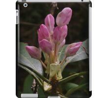 Budding Gorge iPad Case/Skin